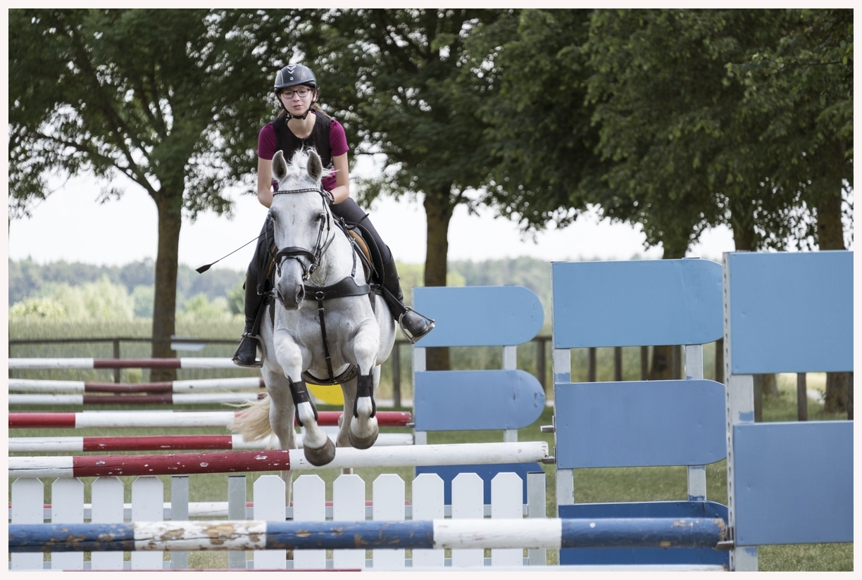047-Pferd-040617