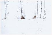 09-Winter-100218