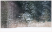 24-Winter-100218