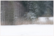 24-Winter-1002181