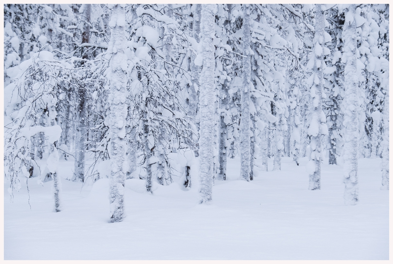 080-Finnland-18