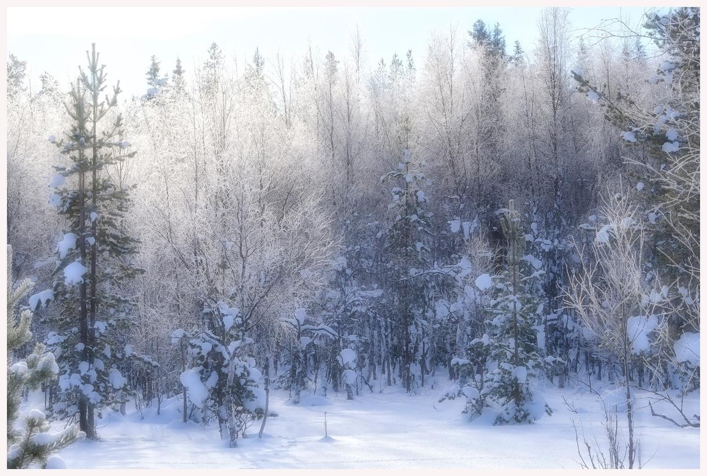 182-Finnland-18