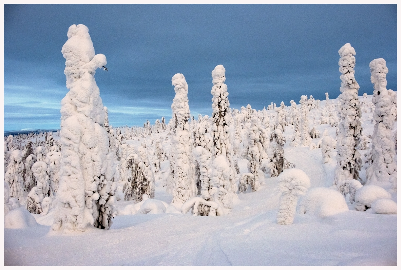 237-Finnland-18